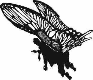 Henrik Schrat: Butter Fly, 2006